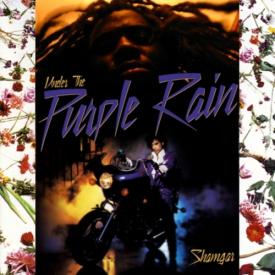 shamGar - UNDER THE PURPLE RAIN Cover Art