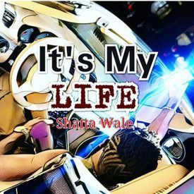 IT'S MY LIFE [SARKODIE DISS]