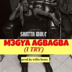 Megya Agba Agba (I TRY )