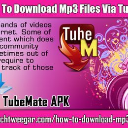 Shawn Green - Instructions To Download MP3 Files Via TubeMate 2.2.9 Cover Art