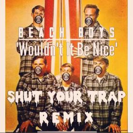 Beach Boys - Wouldn't It Be Nice (ShutYourTrap Remix)