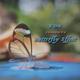Travis Scott - Butterfly Effect x Skeng HeI HeImixx