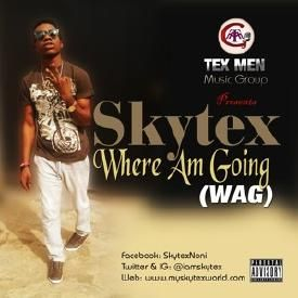 Where Am Going (WAG)