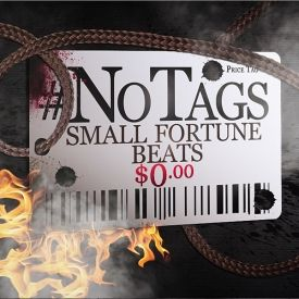 Small Fortune Beats - No Tags Free Instrumentals Cover Art