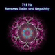 741 Hz Removes Toxins and Negativity
