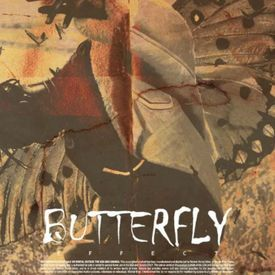 Butterfy Effect