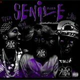 SquadMuzic45 - Senile Remix Cover Art