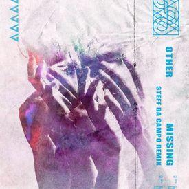 Missing (Steff da Campo Remix)