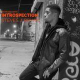 Steves J. Bryan - Introspection Cover Art