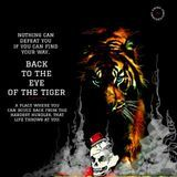 sonny ravan - Back to the Eye Of The Tiger Cover Art