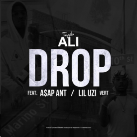 Drop (Remix)