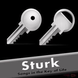 Sturk - Songs in the Key of Life Cover Art