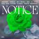 Notice JAEL Remix