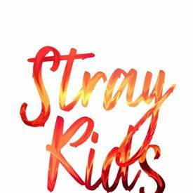 Stray Kids [최종회] 씹어 먹어버리겠습니다 Grrr 총량의 법칙♬ @ FINAL MISSION 171219 EP.10