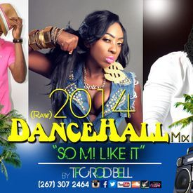 SO MI LIKE IT - 2014 DANCE HALL Mix (Raw)