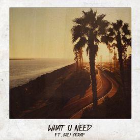 What U Need (ft. Kali Skrap)