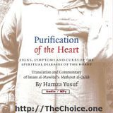 The Choice - Purification_Of_The_Heart Cover Art