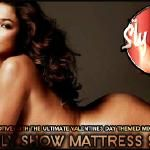 theslyshow - Mattress Slaps 1 mixed by DJ Motive Cover Art