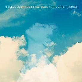 Brave (Tim Gunter Remix)