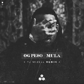Mula (TJ Mizell Remix)