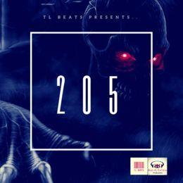 "Music Beats for Sale - TL Beats - ""205"" Cover Art"