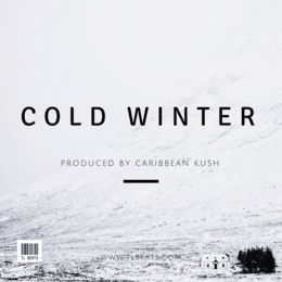 Music Beats for Sale - TL Beats - Cold Winter Cover Art