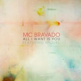 All I Want is You (remix)