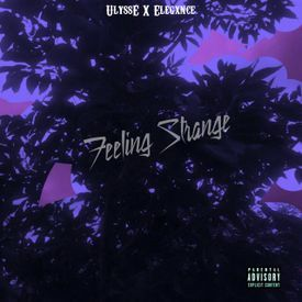 Feeling Strange ( Prod. By Elegxnce )