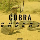 Under I - Cobra (Original Mix) Cover Art