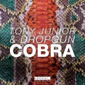 Cobra (Original Mix)