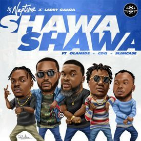 Shawa Shawa