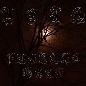 4. Enter Into Dark