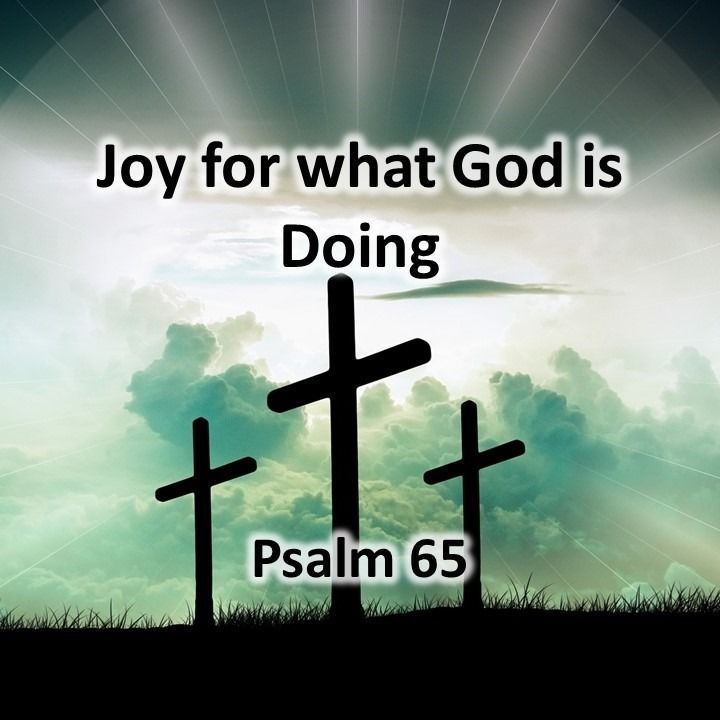 Joy for what God is Doing, Psalm 65 (03/17/2019)