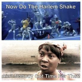Ain't Nobody Got Time To Harlem Shake (Vicky Lesley Mashup)