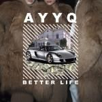 vinhluong - Better Life Cover Art