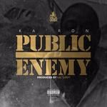 WESTERN CONFERENCE - Public Enemy Cover Art