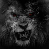 W Duv - King of Da Jungle Cover Art