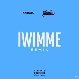 I Wish I Missed My Ex (Remix)