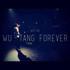 Wu Tang Forever (Freestyle)