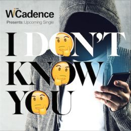 WiseCadence - I Don't Know You (instrumental) Cover Art