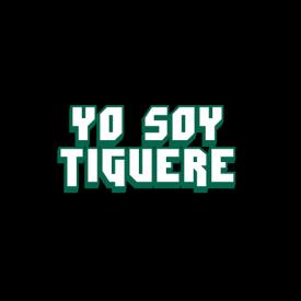 Hip Hop Por Que Me Gusta (Www.yosoytiguere.com)