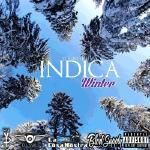Young FP - INDICA WINTER HOSTED BY DJ SWU Cover Art
