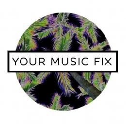 YOUR MUSIC FIX - I Just Wanna Party (Feat. ScHoolboy Q & Jay Rock) Cover Art