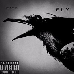 Zaymbm - Fly Cover Art