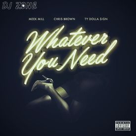 Whatever You Need (DJ Zone)