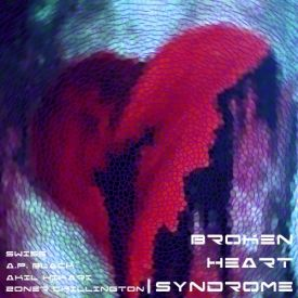 Brother Zone - Broken Heart Syndrome Cover Art